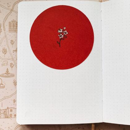 Zdjęcie okładkowe wpisu: Recenzja: Notebook Therapy i Tsuki Collection